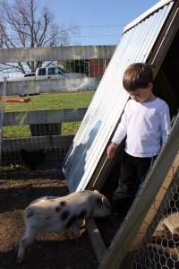 Wordless Wednesday: On the Farm