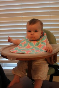 Svan High Chair