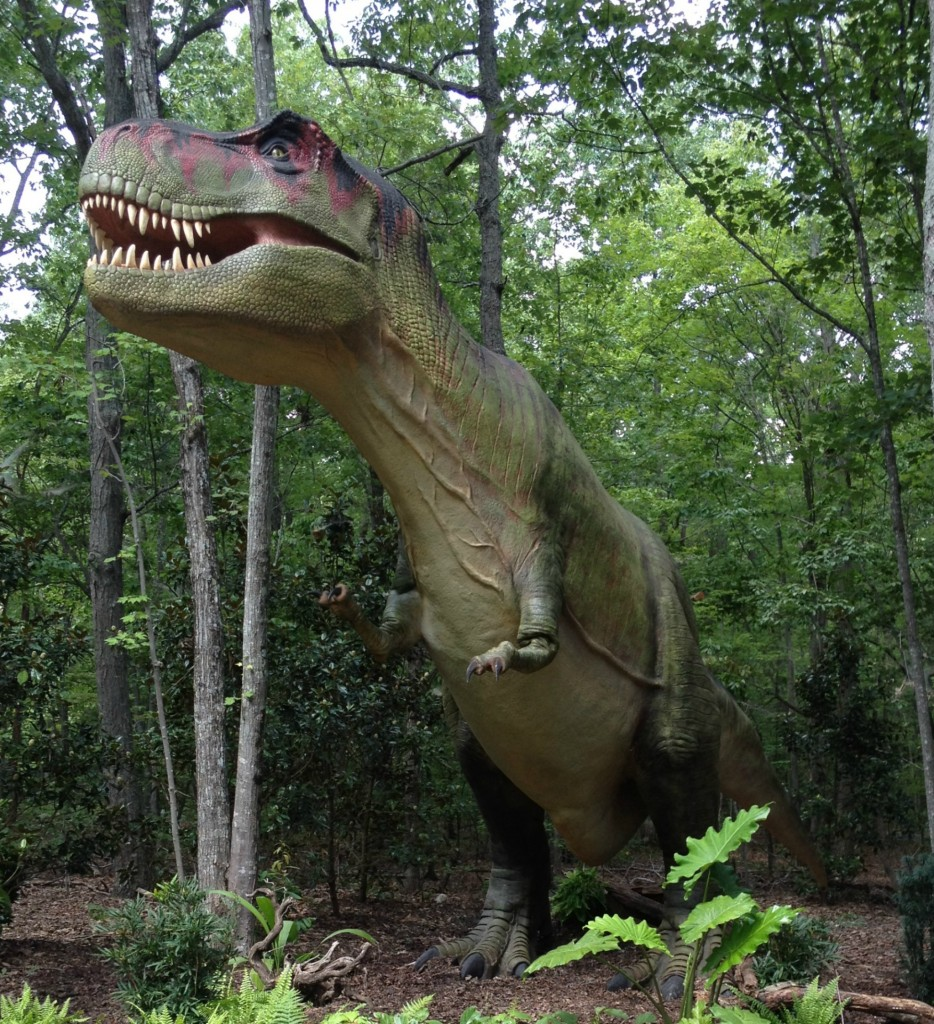 T-Rex at NC Zoo