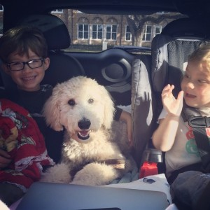Tips for a road trip with young children – the reality edition
