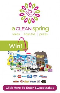 It's time to clean! {Harris Teeter Clean Spring Contest}