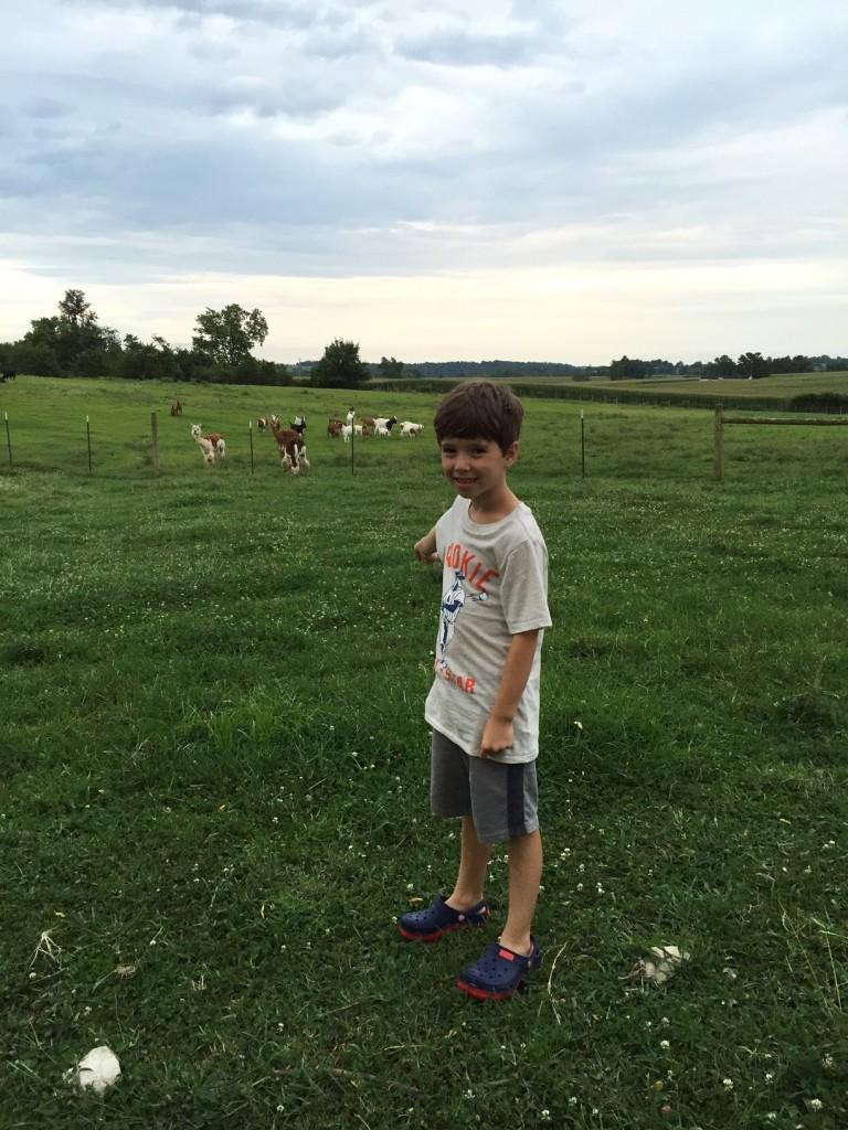 Aidan on the farm