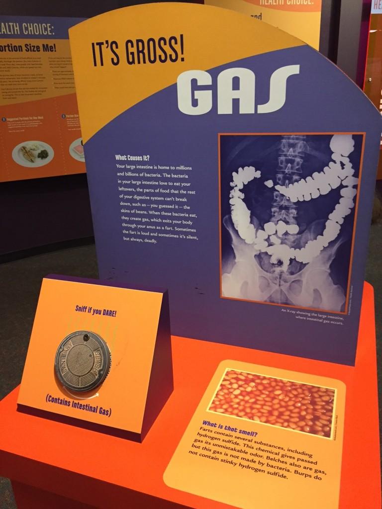 Gas exhibit at Greensboro Science Museum