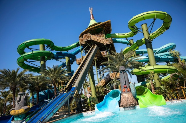 turtle and whale slides at volcano bay